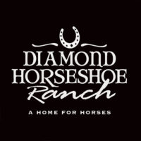 logo and brand development by Cowgirls Designs for Diamond Horseshow Ranch