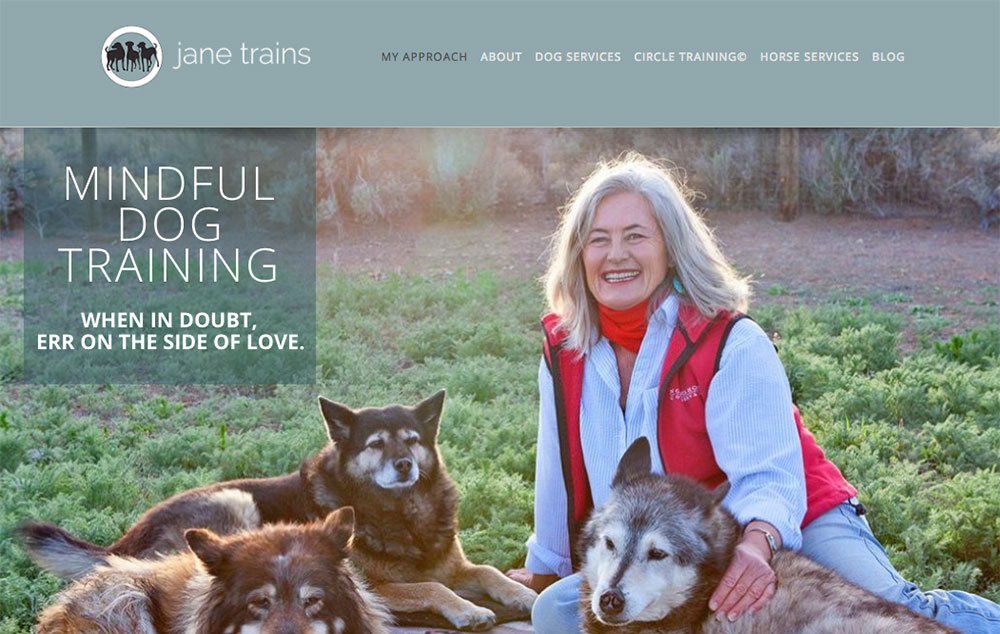 website design for Taos, NM dog trainer Jane Trains